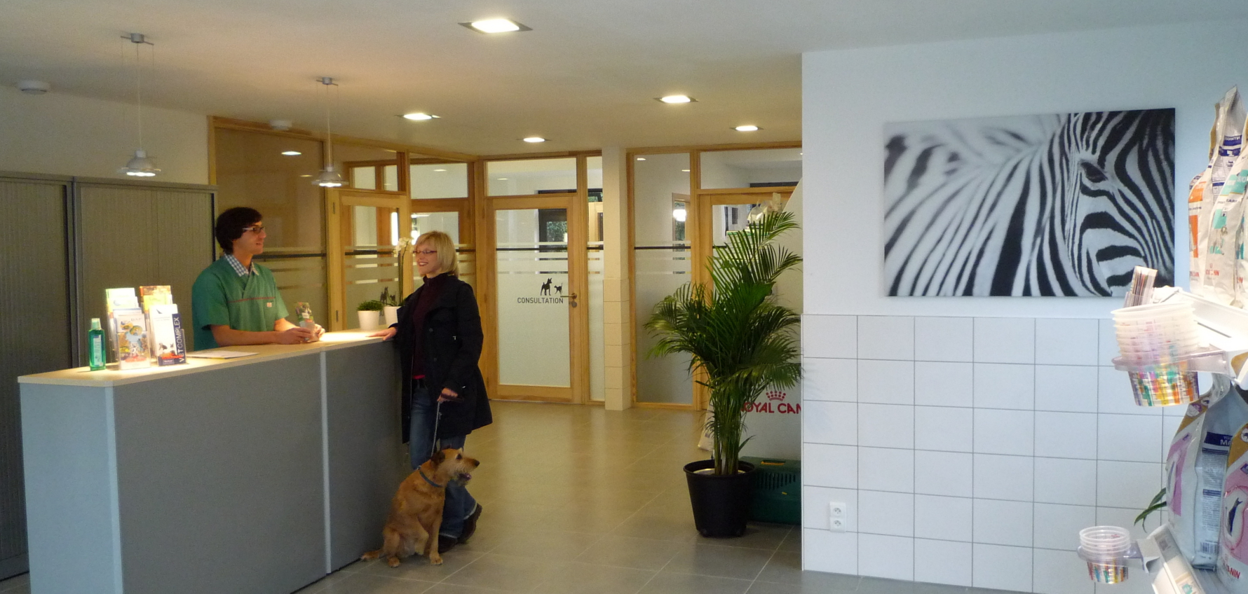 Accueil-veterinaire-verviers-heusy